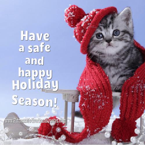 Have  a Wonderful Holiday Season
